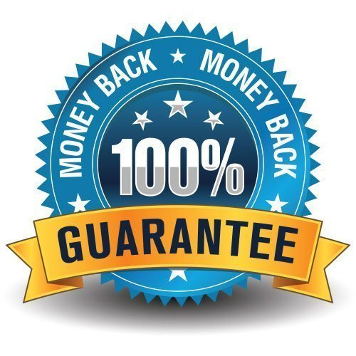 100% Gurantee on Email Marketing Audit Logo